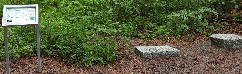 Foto von Riedlewald-Parcour Steinehüpfen